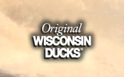 Original Wisconsin Ducks